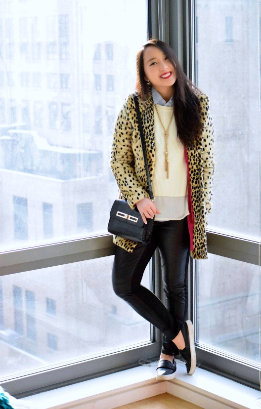 Leopard Love 10