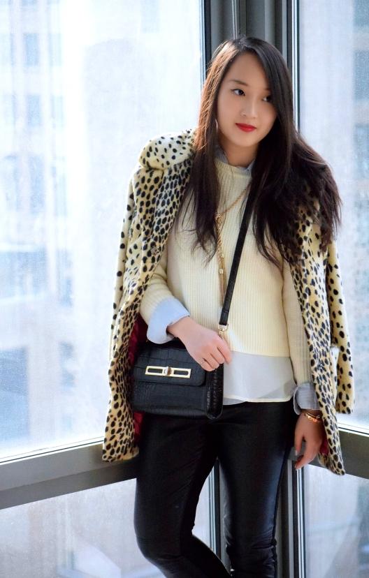 Leopard Love 11