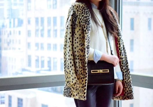 Leopard Love 5