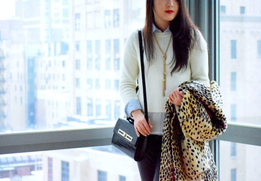 Leopard Love 6
